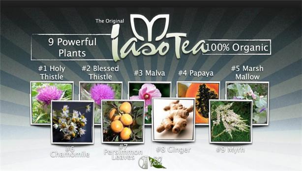 Benefits of Iaso Tea